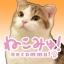 【猫カフェ生中継】恵比寿「ニャフェメランジェ」10/15(月) 全22匹!血縁関係のある仲良し猫さんいっぱい