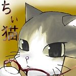 ちぃ猫@屋根裏