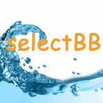 selectBB