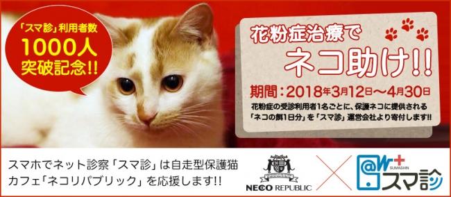 花粉症治療でネコ助け!キャンペーン
