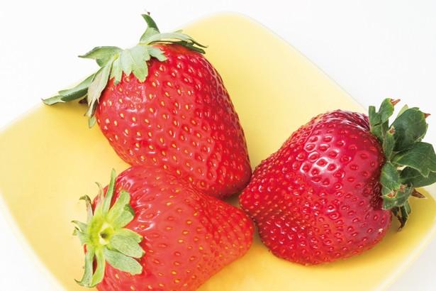 千葉県産のチーバベリーや真紅の美鈴のほか、紅ほっぺやおいCベリー、やよい姫、章姫などが登場