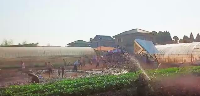 農園有機野菜はその場で収穫して食べられます。