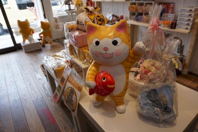 メインイメージで使われている可愛い茶トラ猫「コロンちゃん」。笑顔が癒やされます。
