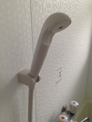 シャワーヘッドとホース