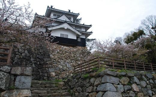 吉田城鉄櫓と石垣