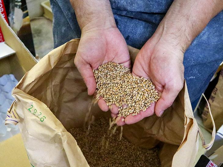 茨城で生産される小麦「ゆめかおり」