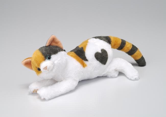 三毛猫のオス発売