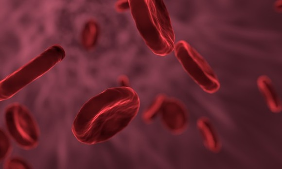 red-blood-cells-3188223_640_e
