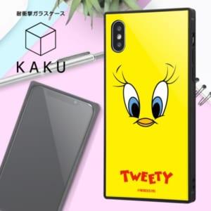 耐衝撃ガラスケース KAKU トゥイーティーフェイス2
