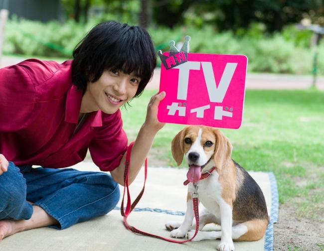 「月刊TVガイド2019年10月号」(東京ニュース通信社刊)