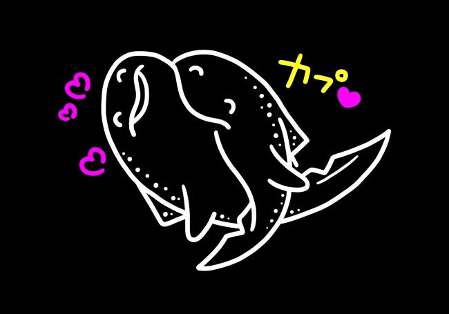 噛むほどにサメない恋 :トラフザメ
