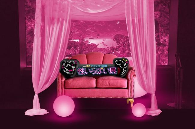 ムーディーなお部屋の世界観を表現したピンクのソファー