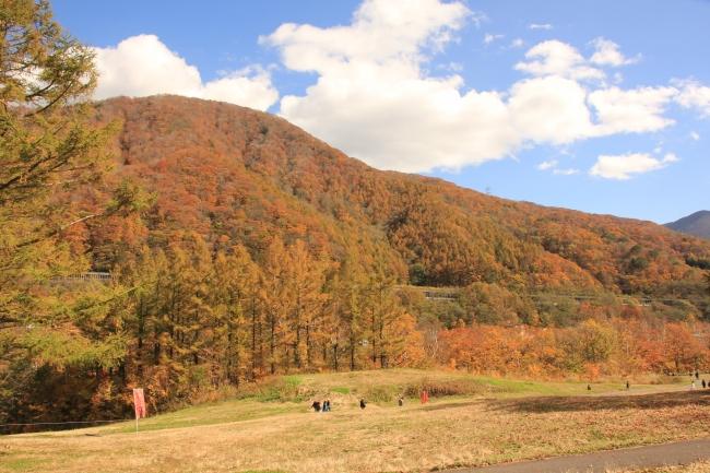 紅葉の中をのんびりとお散歩