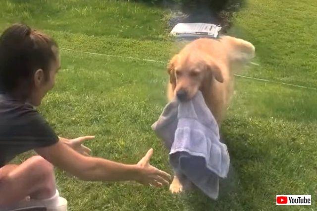 towels0_640