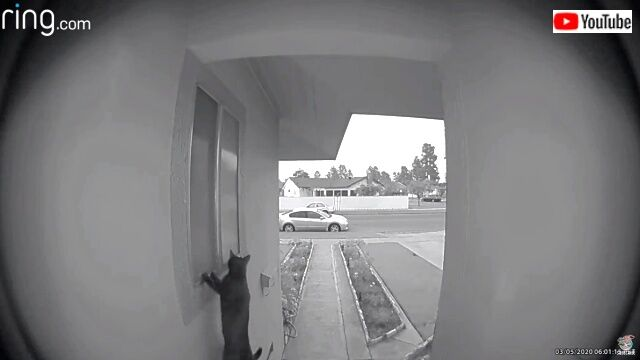 doorbell2_640