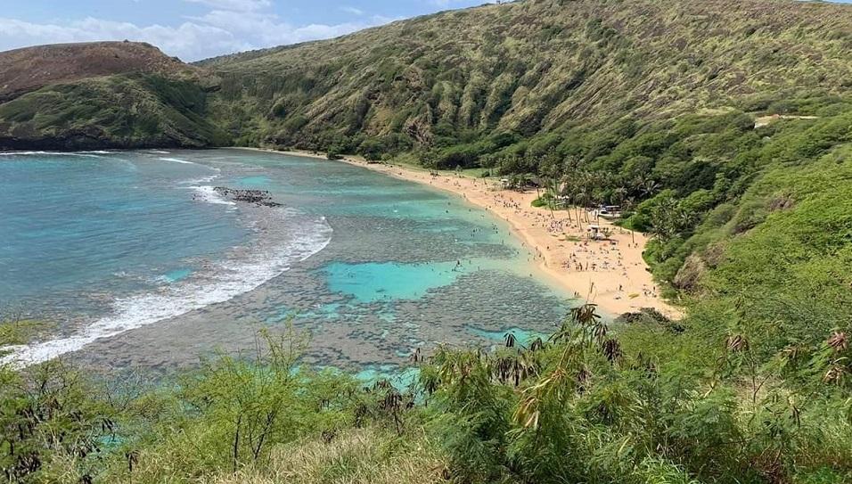 ハワイ コロナ