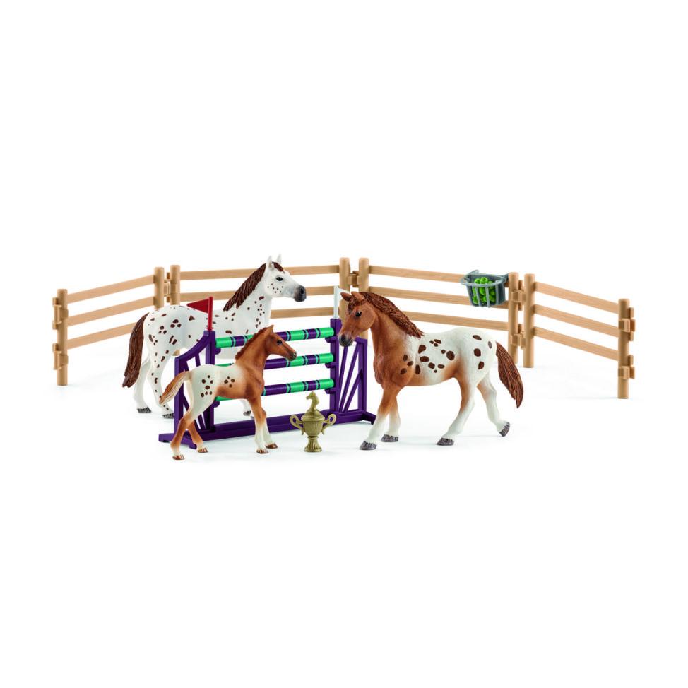 アパルーサ馬のトレーニングセット