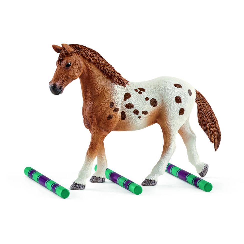 アパルーサ馬のトレーニングセット2