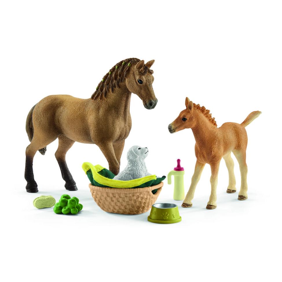 クォーター馬と赤ちゃん動物のお世話セット