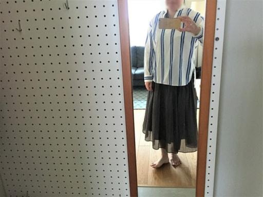ブルーのストライプ柄のシャツ+ネイビーのロングスカート
