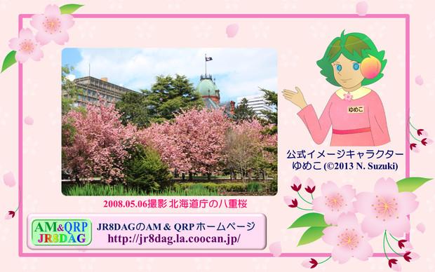 『JR8DAGのAM & QRP ホームページの壁紙(桜2021)』のサムネイル