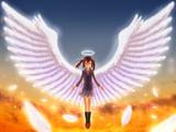 天使にふれたよ!