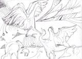 白鳥デザイン