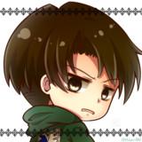 アイコン用・リヴァイ式しつけ方(リヴァイver)
