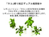 2/23(土)21:00~22:00の『#縛りロボトル』案内